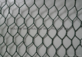 Well-know hexagonal wire mesh