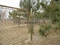 gardens fencing BW-11
