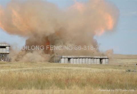 防爆网筐 WL-10 1
