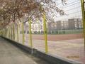 sports Fencing  HW-23