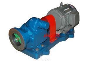 GZB高真空齿轮泵 2