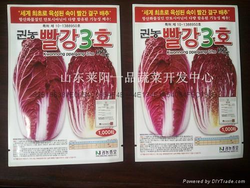 紫白菜種子 1