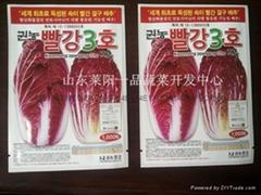 紫白菜种子