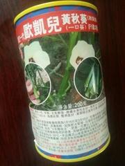 欧凯儿水果秋葵种子