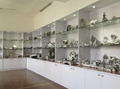 die casting sample room