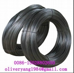 Black Iron Wire(8#-38#)