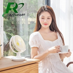 Simple and cute can place USB desktop fan can shake head