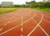 聚氨酯   球场/跑道/运动场