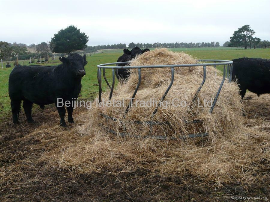 save cattle structures combination klene vl pipe hay saver and money feeder grain time