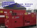 嘉興柴油發電機 1