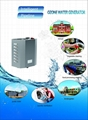 3 ppm water ozonator, instant and