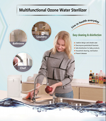 DC 12V ozone water purifier, 1ppm, water sterilization, food cleaning