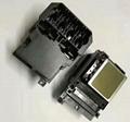 愛普生TX800壓電寫真機噴頭