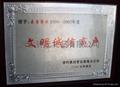 西安奖牌 2