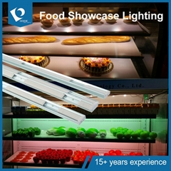 LED Freezer light
