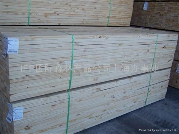 优质东欧干燥樟子松板材林场直供 1