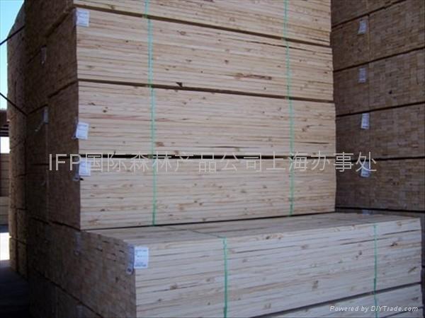 优质东欧干燥樟子松板材林场直供 2
