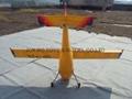 Big Discount --- PZL wilga 20cc 9