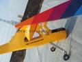 Big Discount --- PZL wilga 20cc 11