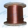 銅包鋼接地絞線