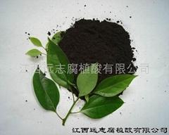 80目精品腐植酸原粉