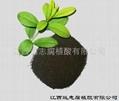 普通腐植酸原粉