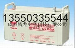 NP100-12/雅安汤浅蓄电池