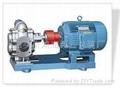 不锈钢齿轮泵 2