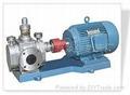 不锈钢齿轮泵 5