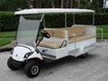 Golf Vehicles Electric Cars 24V 48V 60V Storage Battery Charger