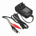 AC DC Lithium Lead Acid Battery Charger