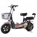 Golf Vehicle Electric Car Lead Acid Battery Charger