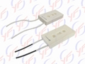 BKG 80W Cement Fixed Power Resistor