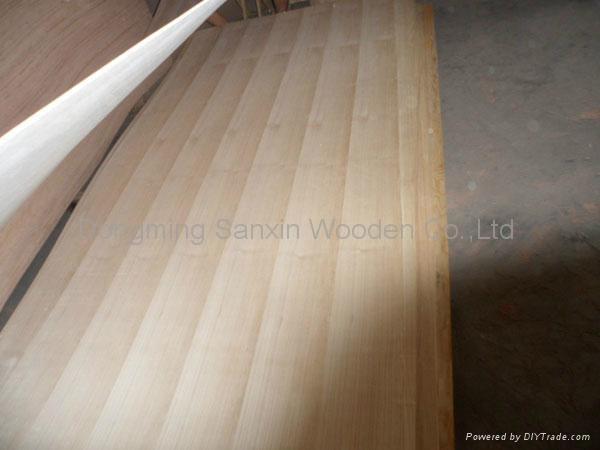 paulownia plywood 2