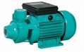 110V/220V QB Series Electric Water Pump for Home Use