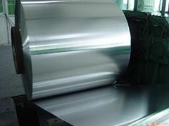 國產316L不鏽鋼帶中厚板材