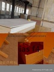 jas film faced plywood
