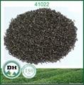 出口阿爾及利亞眉茶41022