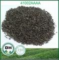 低價供應眉茶41022AAAA