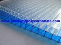 Twinwall polycarbonate sheet frosted pc hollow sheet multiwall polycarbonate