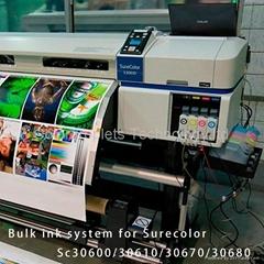 S30600 Bulk ink system